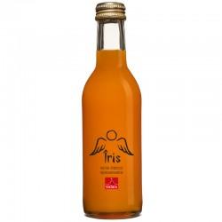 Îris - nectar d'abricot